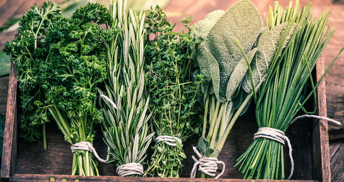 Bunches of herbs Easy Food