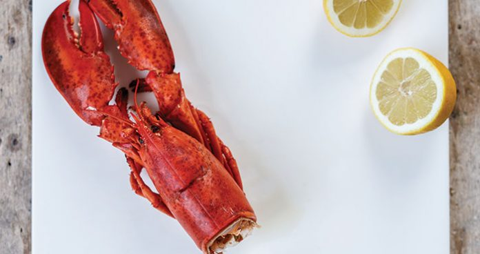 Cooked lobster Easy Food