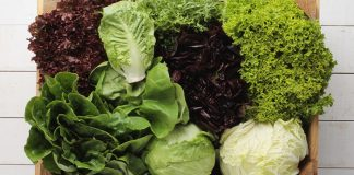 Know your lettuce varieties Easy Food