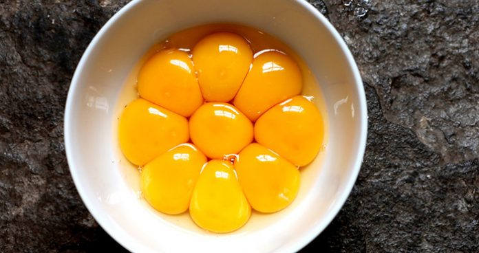 How to use leftover egg yolks Easy Food