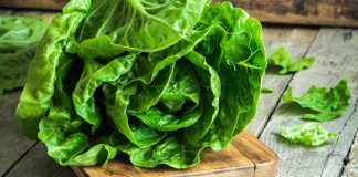 Ways with lettuces Easy Food
