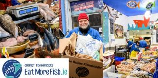 Gannet Fishmonger competition