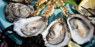Sligo Oyster Experience Easy Food