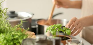 How to cook with fresh herbs Easy Food