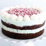 Minty brownie ice cream cake_easyfood_showstopper